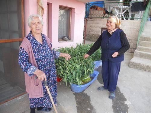 Ангелина Наумова (л) и Благојка Велкова  (д)
