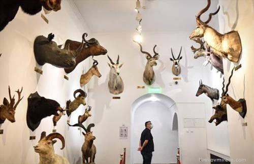отворен е природно научниот  музеј во Букурешт
