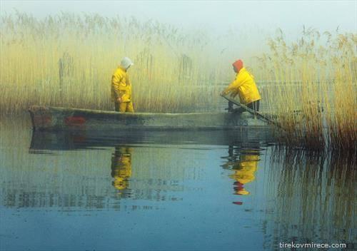 рибарите во Дојран наутро
