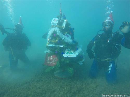 Десет нуркачи од нуркачкиот центар Амфора, 16 година по ред  ја накитија новогодишната елка под вода кај Заливот на Коските