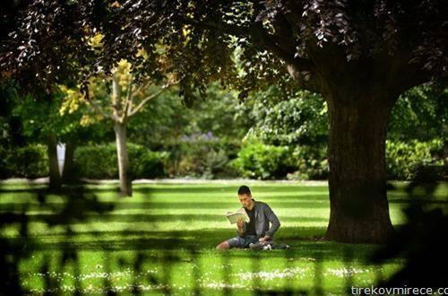 сам со книгата, во парк во Даблин