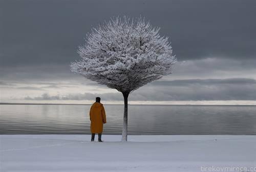 снежен момент во Ванувер Канада