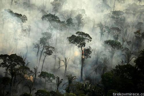 еден од пожарите во Амазон