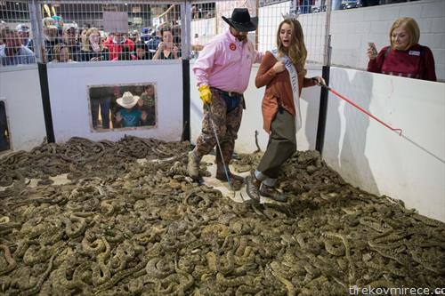 тест на издржликвост, Мис на  Тексас мине низ змијарник