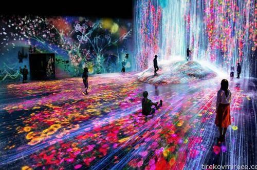 РМузејот за дигитална уметност во Токио, кој е прв таков во светот