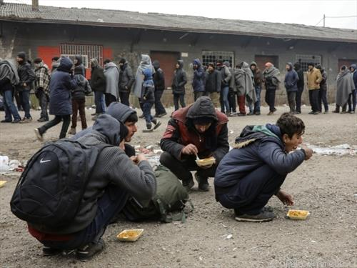 Животот на бегалците, во Белград