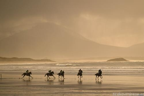 трка на коњи на плажа во Ирска
