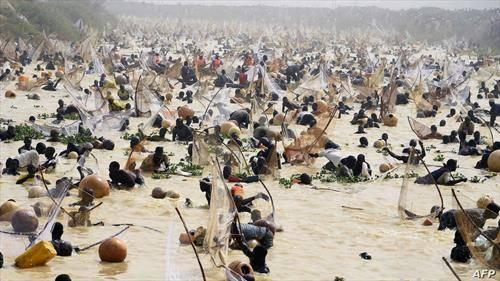 Рибарите фаќаат риби за време на финалето на оживеениот фестивал за риболов во Нигерија