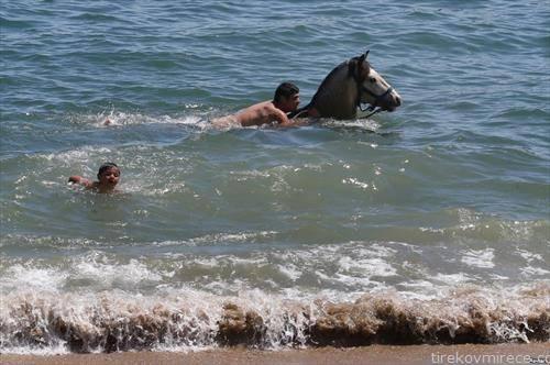 на плажа во Валпараисо Чиле
