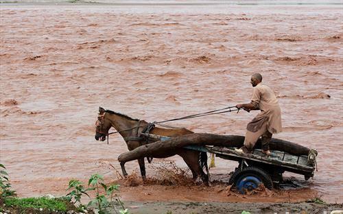 монсуните стасаа во Индија
