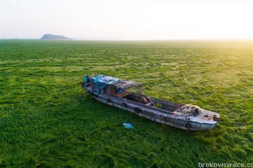 Пјонгјан езерото во Кина се суши