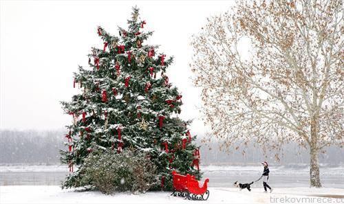 накитена елка на отворено во Канада