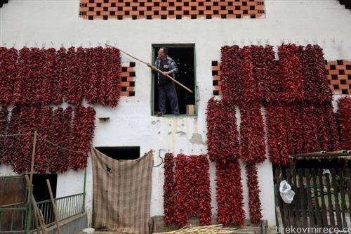 се сушат пиперки,  Лесковац на југот од Србија