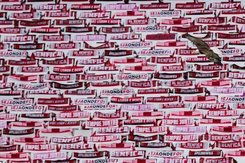 наместо гледачи на натпреварот ан Бенфика во португалското првенство, навивачки шалови