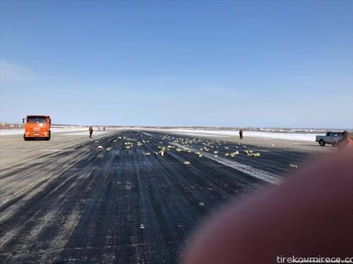 Над 170 златни шипки испаднале од еден руски товарен авион за време на полетувањето. Беа пронајдени сите златни шипки