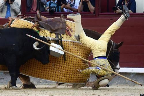 тореадорот долу, за време на борба со бик во Мадрид
