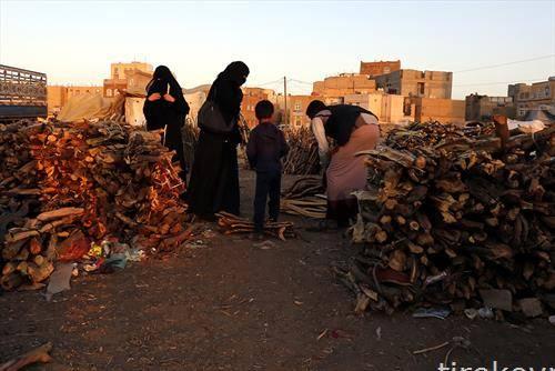 пазар за огревно дрво во Јемен