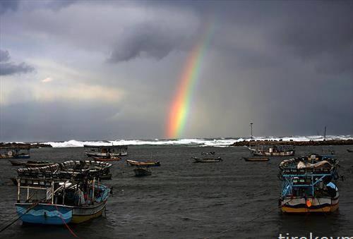 Виножито фотографирано од пристаништето Газа