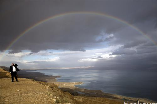 виножитото над Мртвото море во Израел