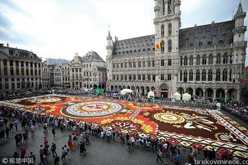 цветен тепих во Брисел со 500 илјади цветови