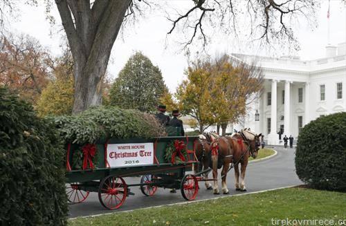 божикното дрво стигнува и до Белата куќа