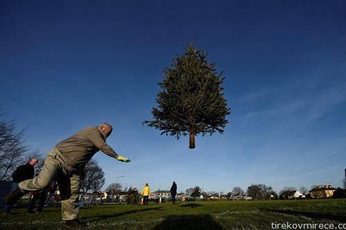 спорт во Ирска, фрлање на новогодишна елка