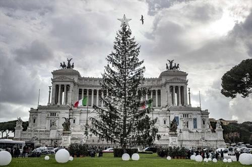 италијанците се лутат на оваа искубана елка, поставена во Рим а платена 480 илјади евра