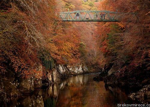 есен во англија