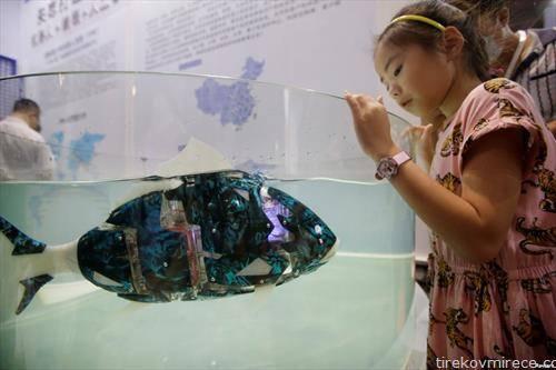 риба робот плива во аквариум во Пекинг