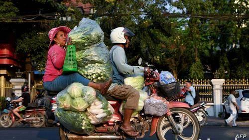 си носам зеленчук за на пазар, во Пном Пен Камбоџа
