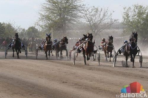 во Суботица се одржуваат касачки трки