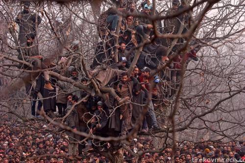 молива за починати борци на Кашмир, Индија