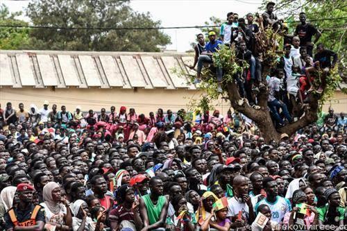 навивачи на Сенегал ги гледаа нивните фудбалери против Колумбија