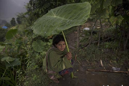 тропски дождови во централна Америка