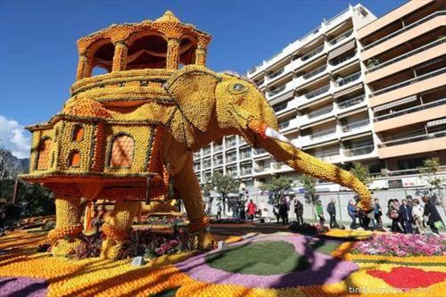 Повеќе од 145 тони лимони и портокали искористени за фестивалот, при што од нив се направени уникатни живописни фигури