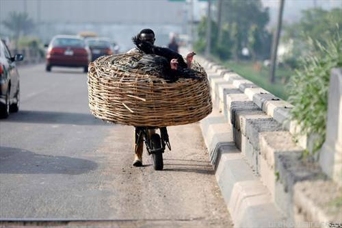 се превезуваат живи мисирки во Лагос Нигерија