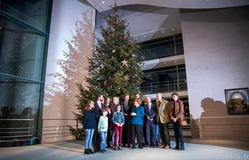 Германската канцеларка, Ангела Меркел,  доби божикна елка, висока 11 метри, донесена од Бранденбург