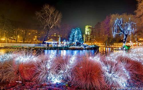 леедена шума во Нови сад, новогодишно