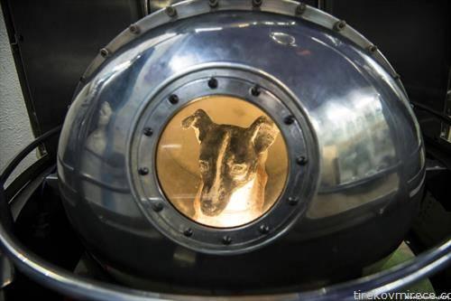 реплика на сателитот Спутник 2, во Музејот на авијација и космонаутика во Москва
