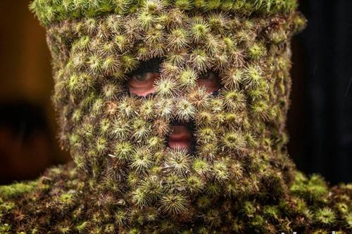 Сана  човек маскиран како дрво, во Англија