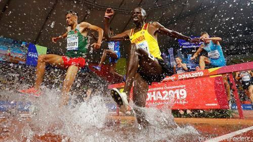 светско првенство во атлетика, во Доха, трка на 3000 метри стпл чез мажи