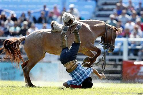 родео во Монтевидeо, скроти го коњот