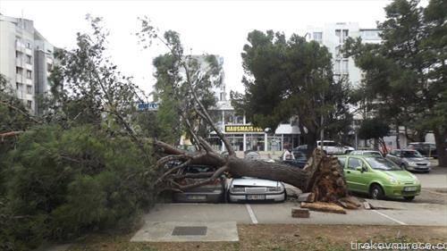 во Бар Црна Гора   падна дрво оштети 4 автомобили