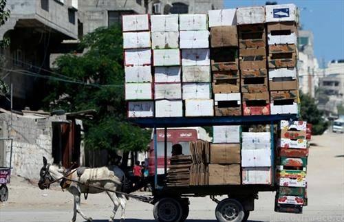 Палестинец пренесува отпад од картонски кутии