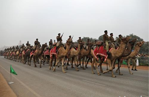 индиски вооружени сили на парада во Њу Делхи, на камили