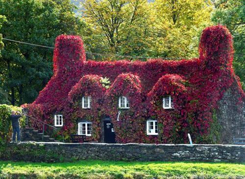 куќа во есенско руво во Англија