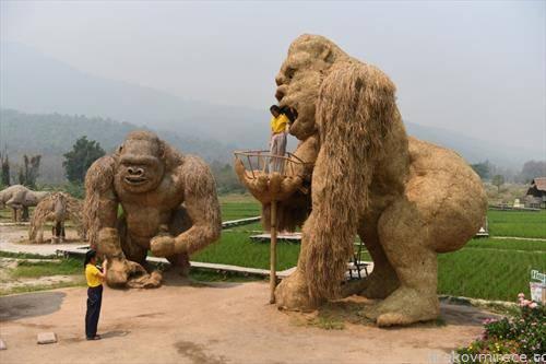 модели на Кинг конг создадени од слама во Кина