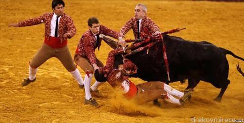 борба во бикови во Лисабон