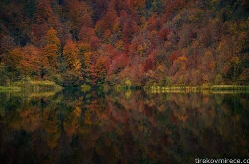 есенска плитвица