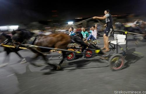 трка на коњски запреги во КАиро